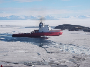 The Russian icebreaker Vladimir Ignatyuk breaking a path in the annual sea ice to McMurdo Station, Antarctica on January 26, 2012. Credit: Steve Royce